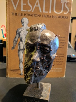 Vesalius bust by Pascale Pollier, number 6 of 12